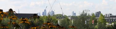 london skyline in the distance